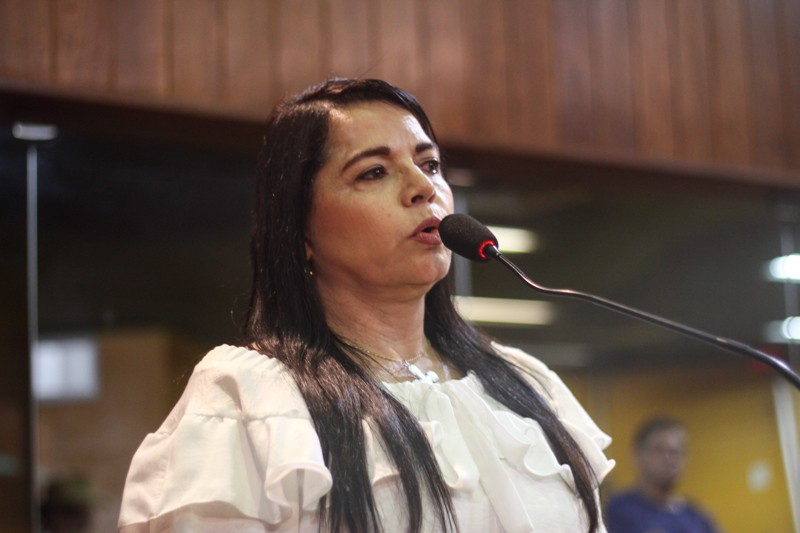 Teresa Britto adverte que 31 barragens do Piauí apresentam problemas