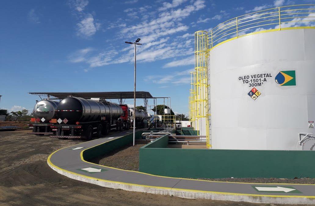 Usina de biodiesel será inaugurada em Floriano na terça (28)